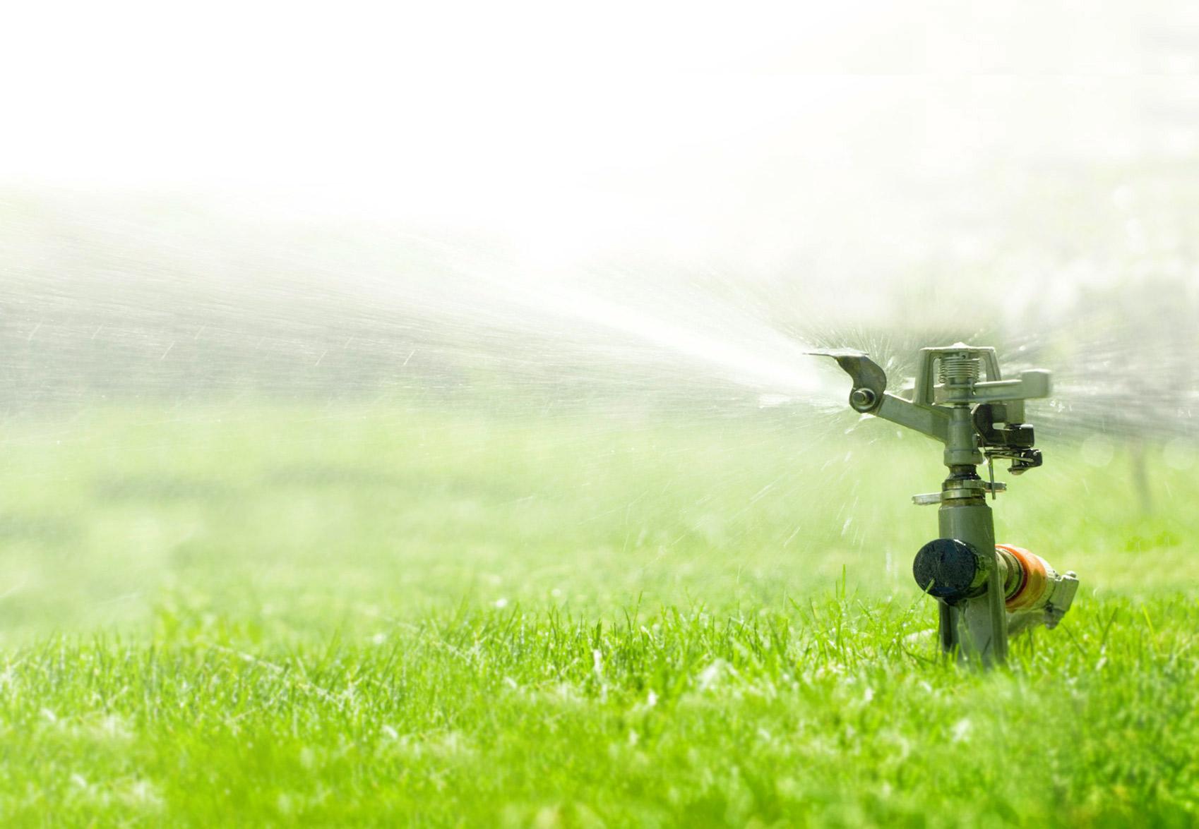 Winter Lawn Care Tips Home Design