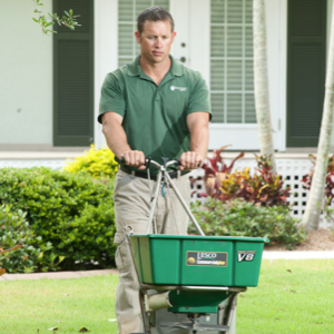 professional lawn care service