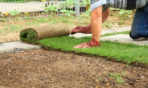 Winter is the perfect time to plan for re-sodding your lawn, before the summer rush.