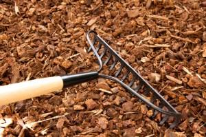 raking mulch