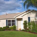 Florida trees and shrubs