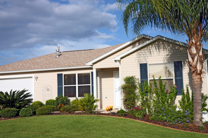 Florida trees and shrubs