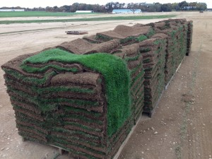 By offering best-in-class sod, delivered right to the door, Harmony Outdoor Brands simplifies lawn installation.
