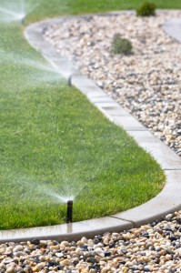 Avoid watering by hand. Having an automatic, timed sprinkler system will ensure uniform irrigation across the entire lawn.