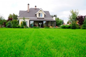 beautiful home lawn