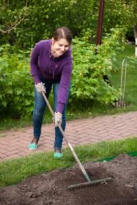 seeding a lawn