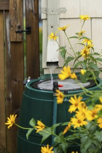 Water flowing into rain barrel