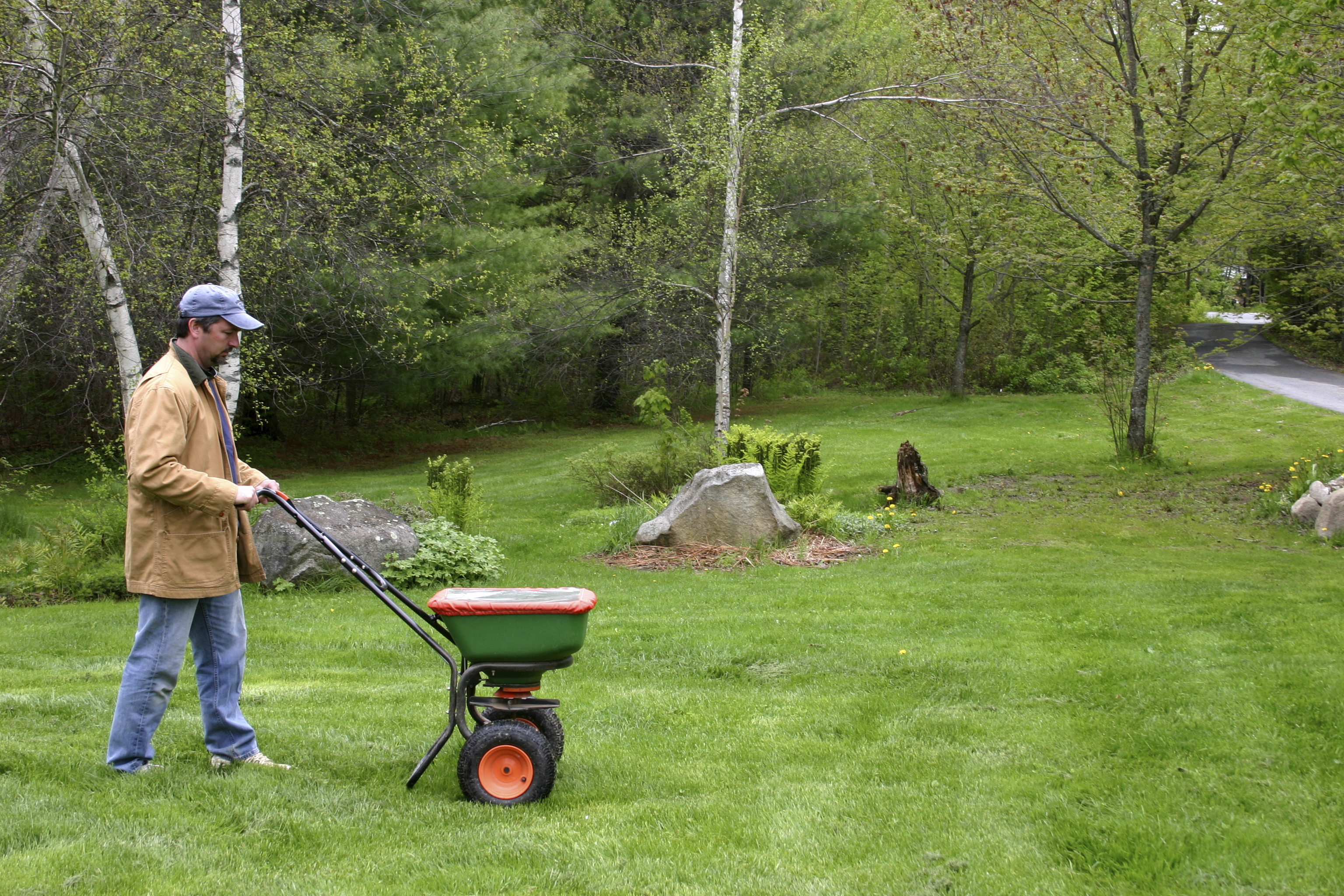 when to apply fertilizer Part - 17:  when to apply fertilizer great pictures