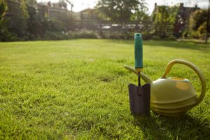 Trowel and watering can in a garden
