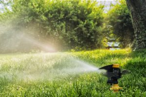 A yellow impact sprinkler in motion as it is watering the green lush lawn, as the sun shines down in the background