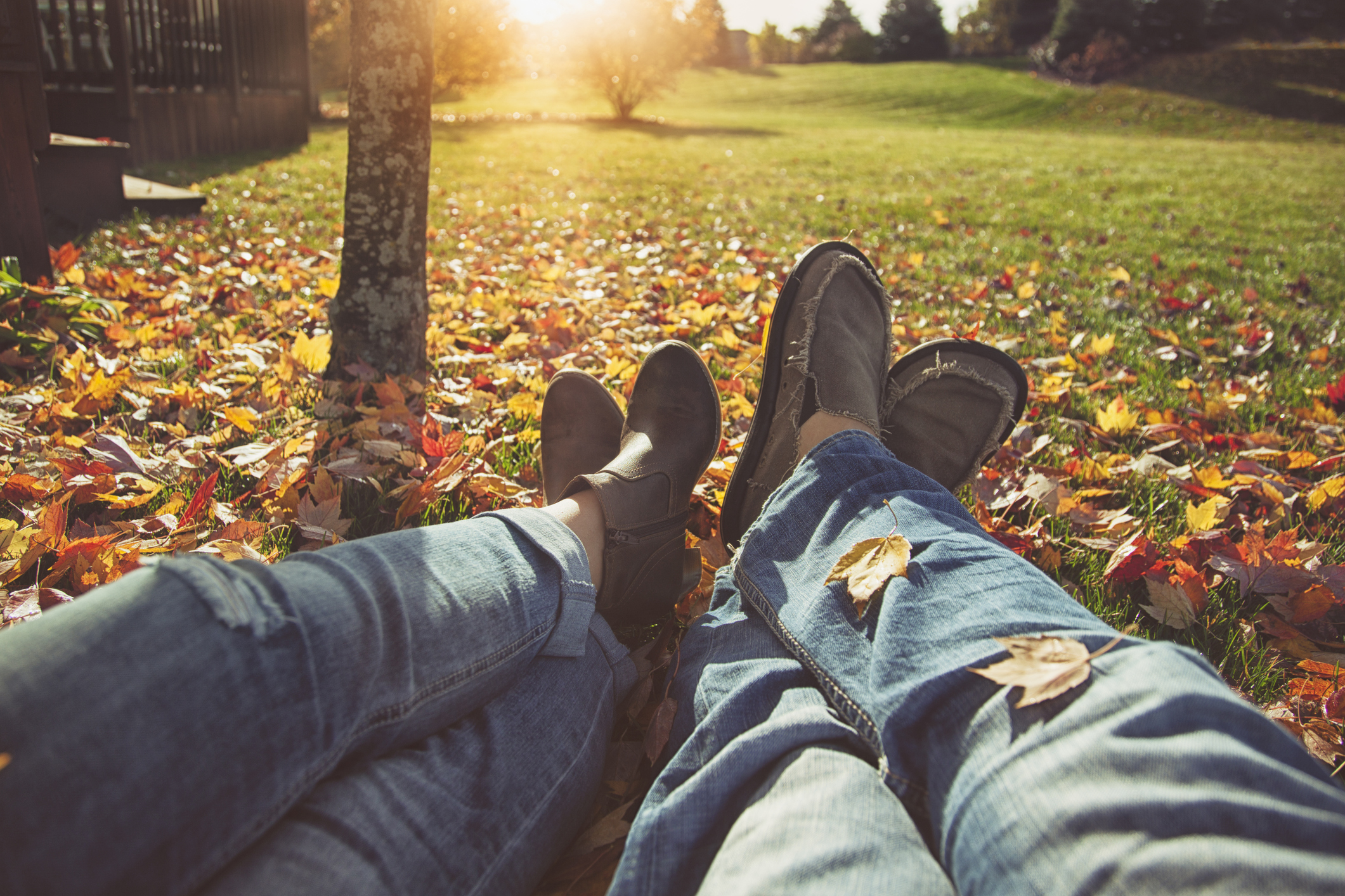 legs and feet of a couple lying side by side in leaf strewn grass